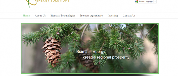 Plantation Energy Solutions